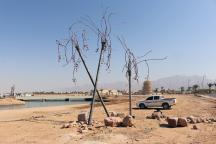 Alfia Leiva, Las palmeras del Edén, 2016.Aqaba, Jordania.